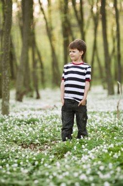 little boy in forest on flowers field