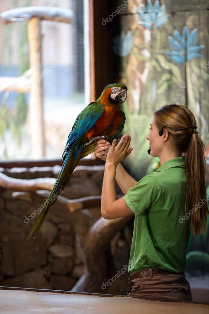 Oasis Park - Parrots live show. Women holding the big parrot.  Fuerteventura a430a3c4e6