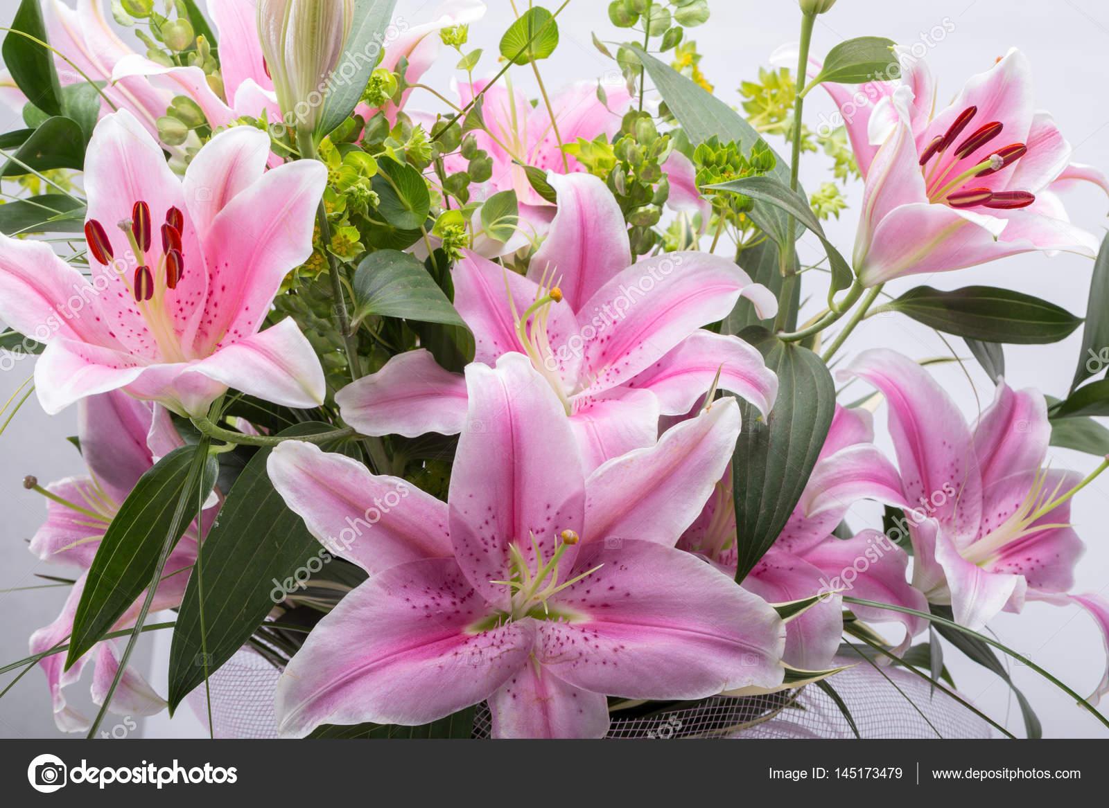 Pink Lily Flower Stock Photo Wjarek 145173479