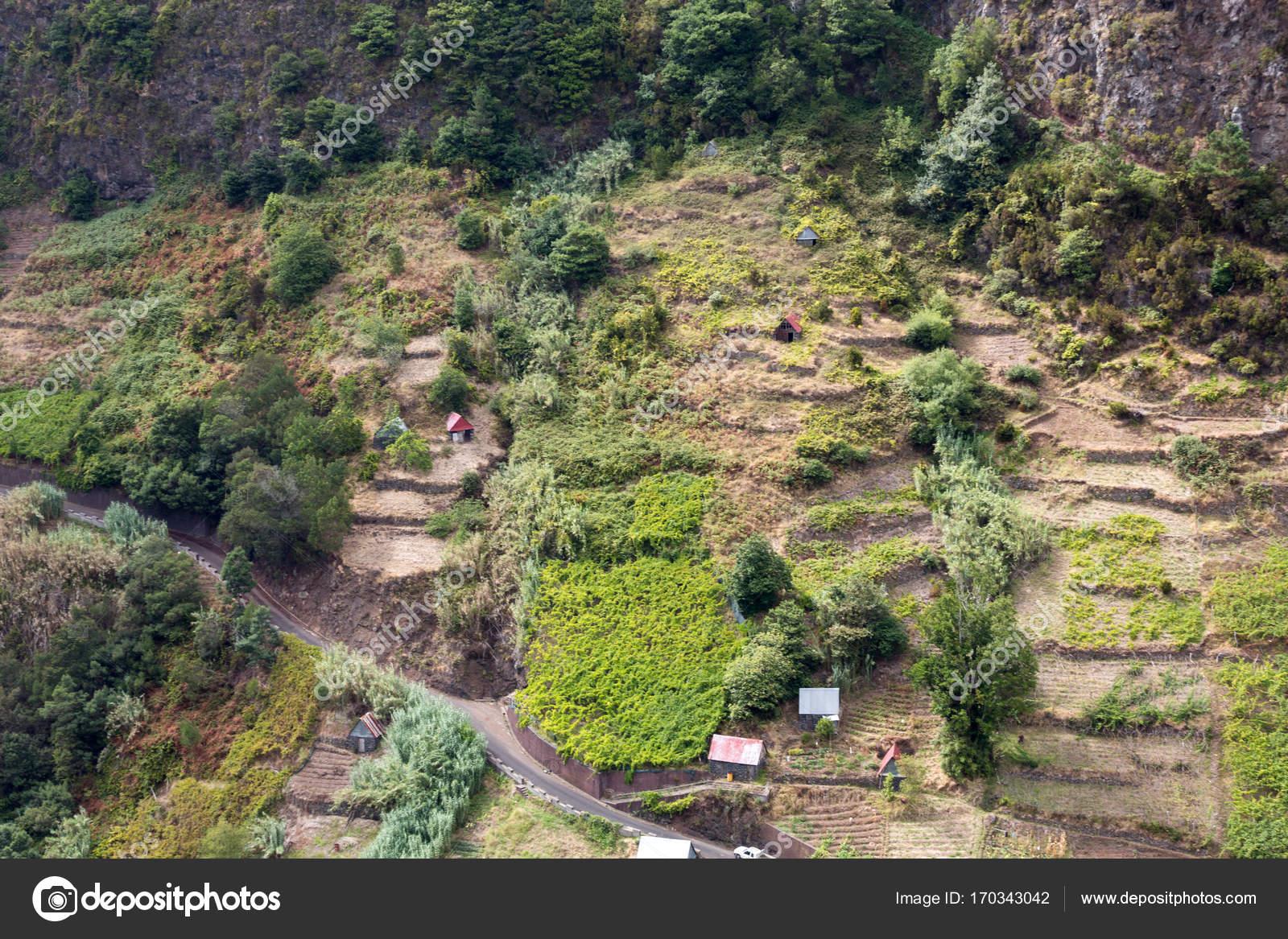 Villaggio e terrazza coltivazione nei dintorni di Sao Vicente. Costa ...