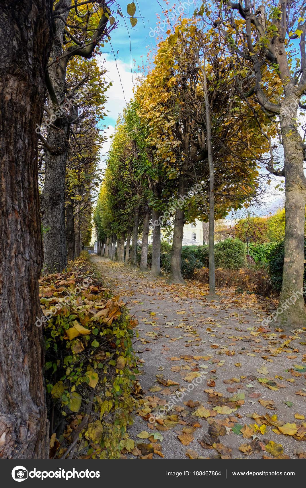 Paris France November 2017 Autumn Paris Garden Rodin Museum Paris ...
