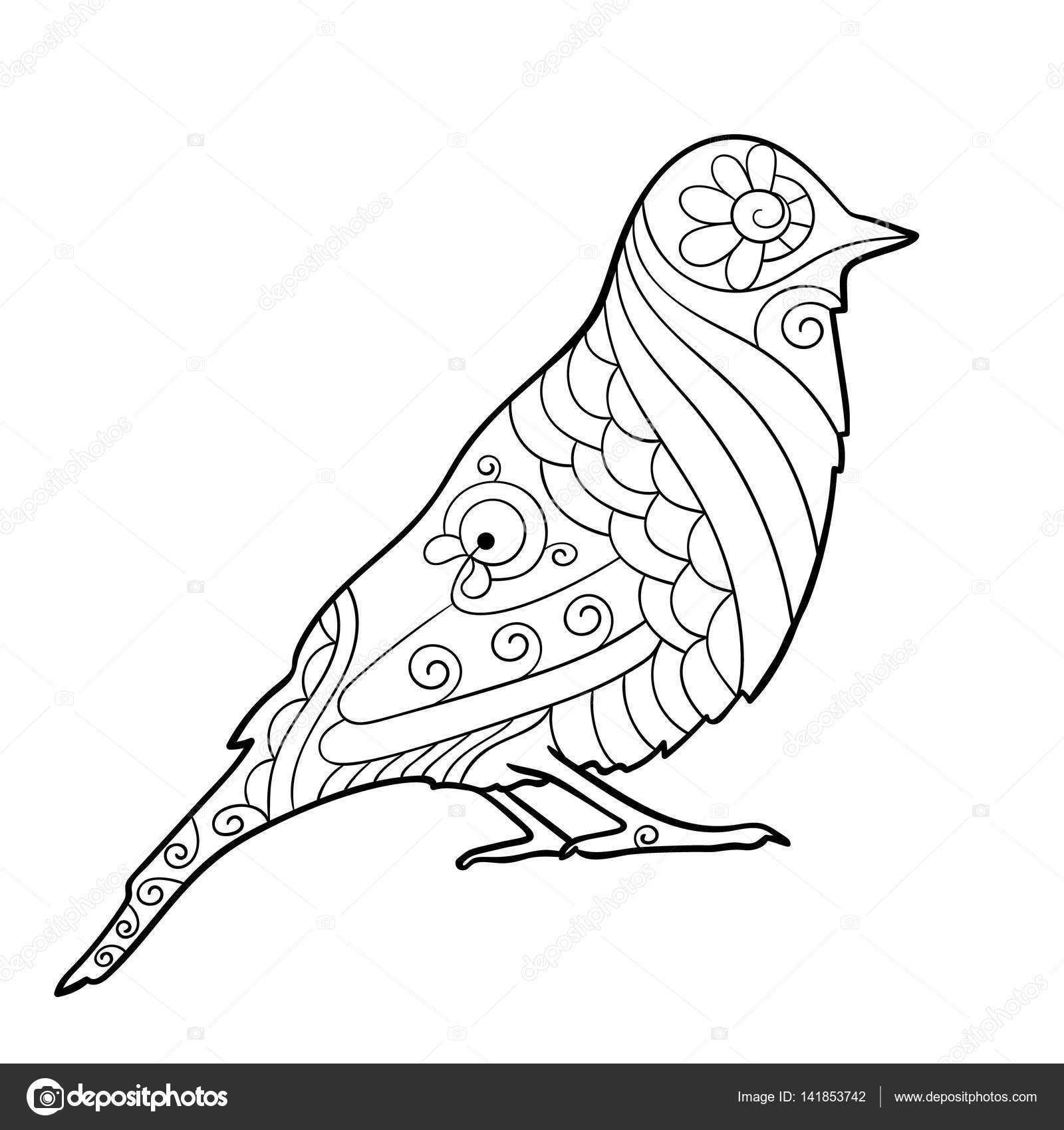 塗り絵のための鳥のページ ストックベクター Olgatropinina 141853742