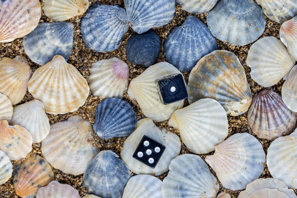 dice on the background of sea shells