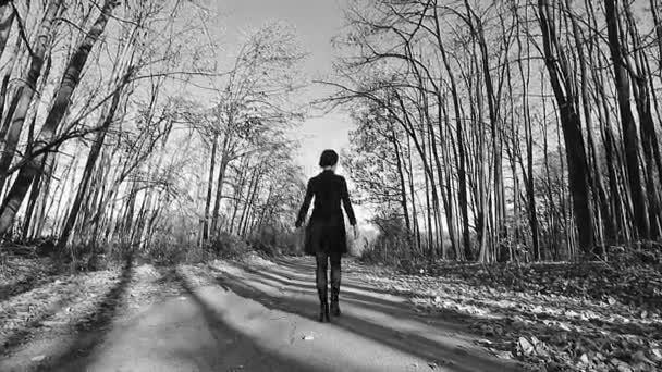 b0afacb36 Mujer Joven Vestida Negro Caminando Bosque Blanco Negro Video– metraje de  stock