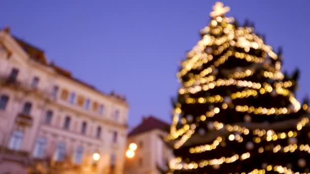 rozostřeného vánoční strom v Pecs, Maďarsko