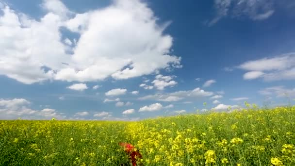 rape field with cloudy sky and red umbrella