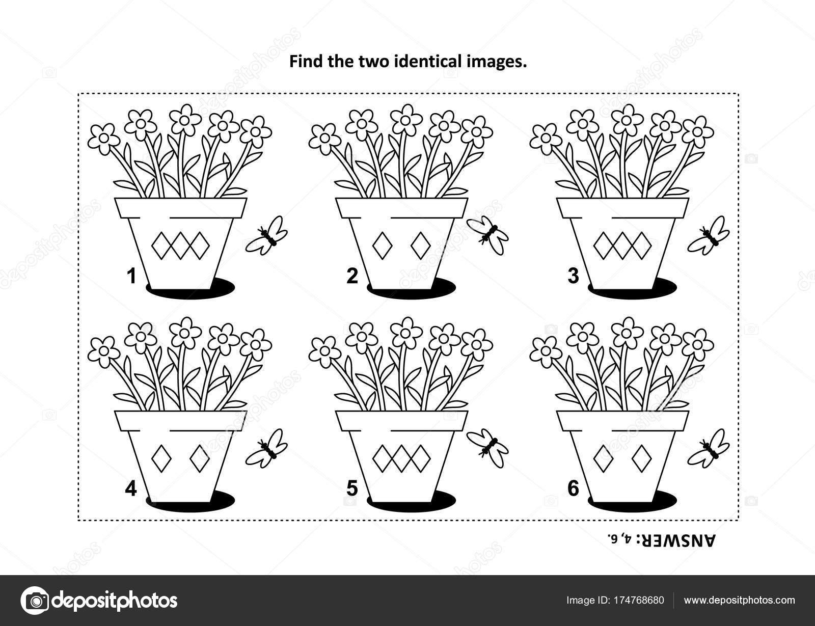 Eğitim Saksı çiçekleri Görsel Puzzle Boyama Sayfası Ile Iki özdeş