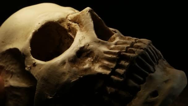 Lidská lebka analýza
