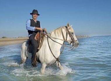 horse rider in the sea