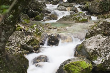 "Картина, постер, плакат, фотообои ""река с сильным течением картины природа"", артикул 125575802"