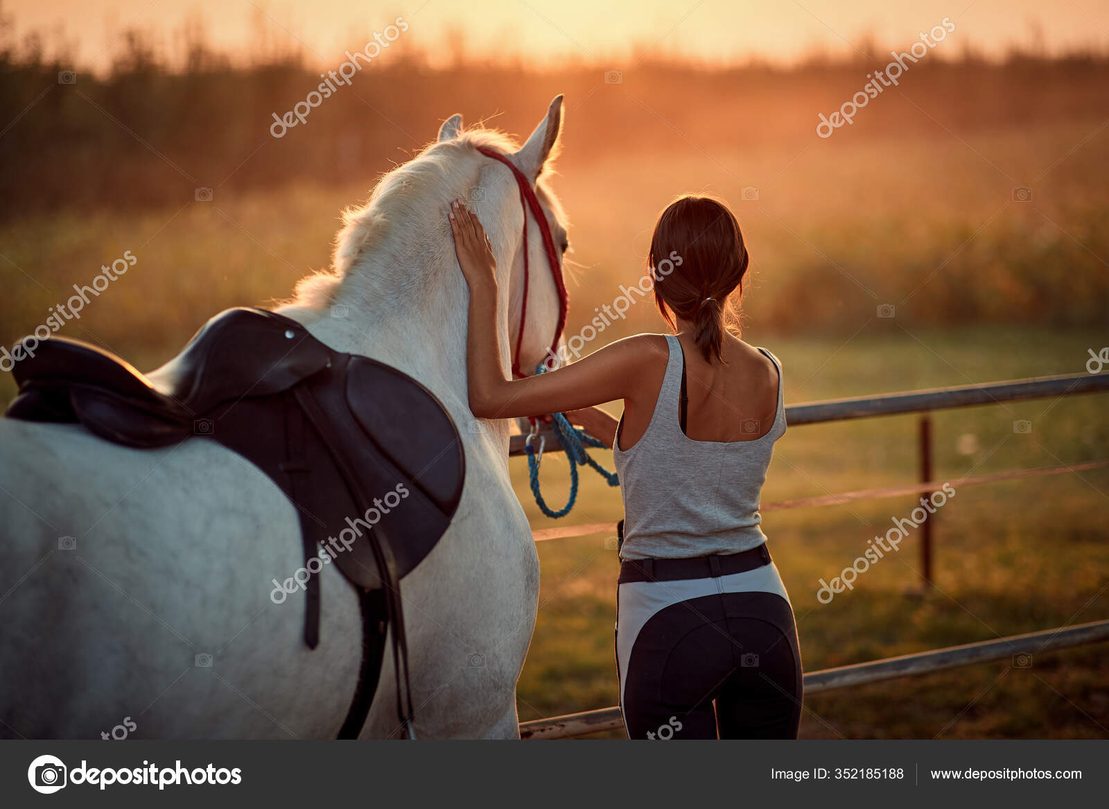 Young Rider Woman Her Beautiful Horse Sunset Stock Photo C Luckybusiness 352185188