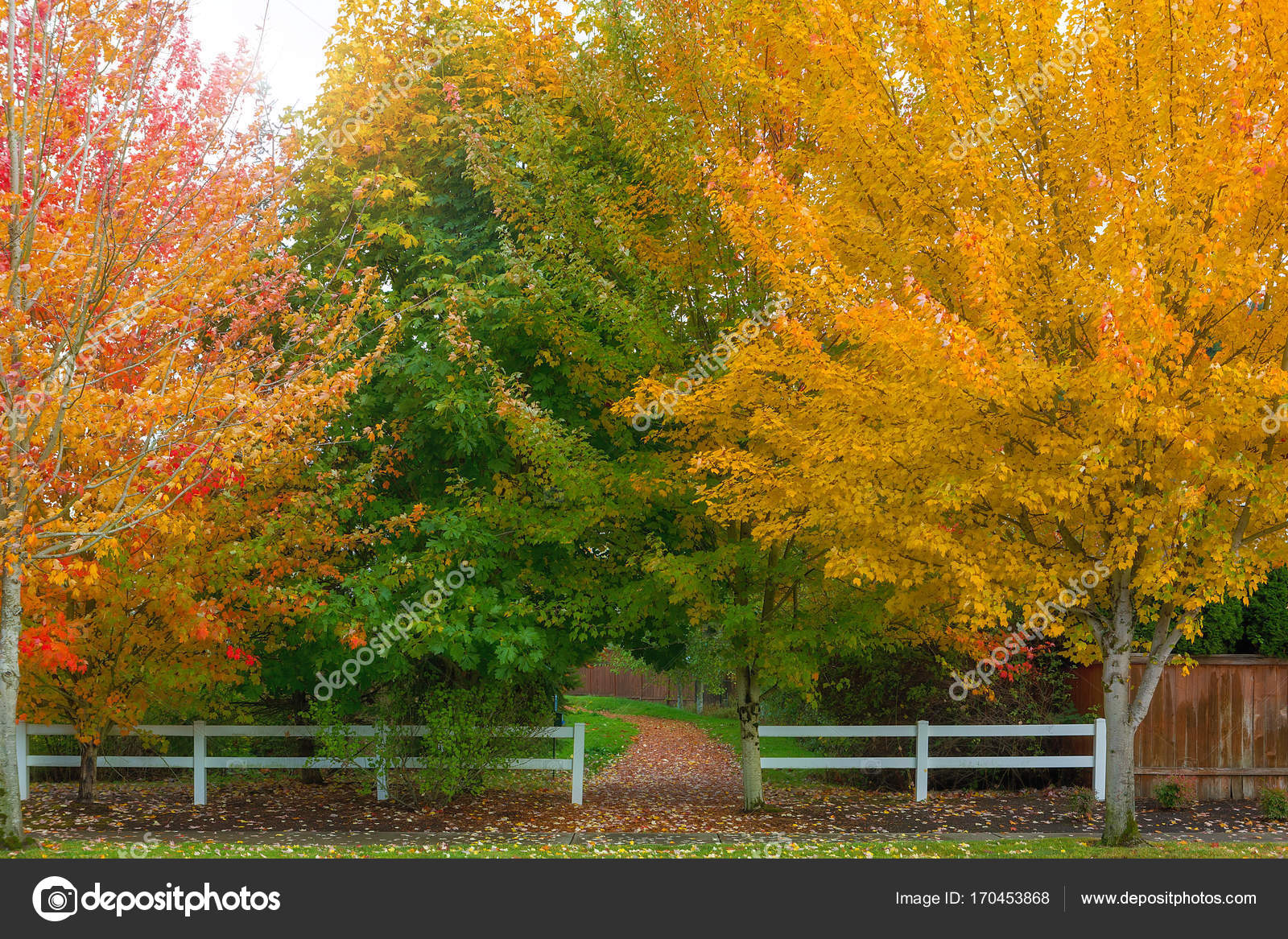 Fall Colors at Park Entrance in Suburban Neighborhood — Stock Photo ...