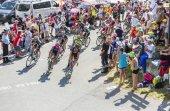 The Peloton in Mountains - Tour de France 2015