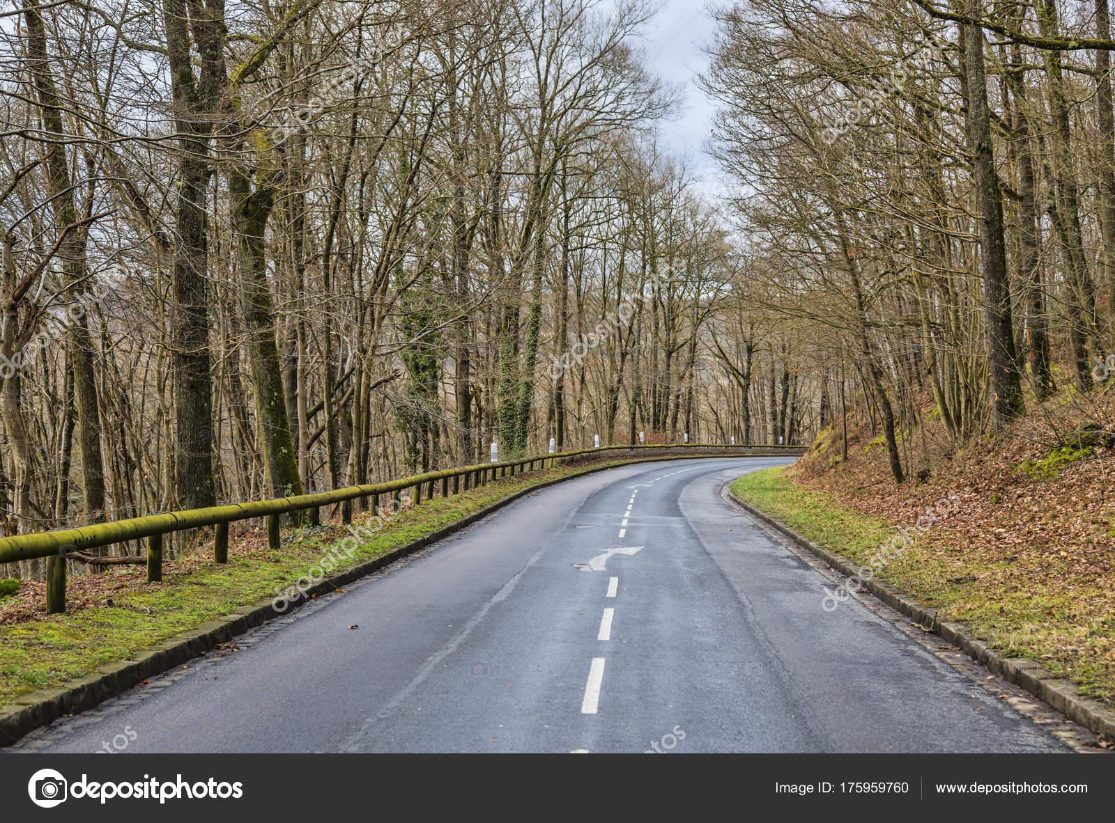 7f2e01012bc Obrázek prázdný zakřivené cesty v lese v brzy na jaře — Fotografie od ...