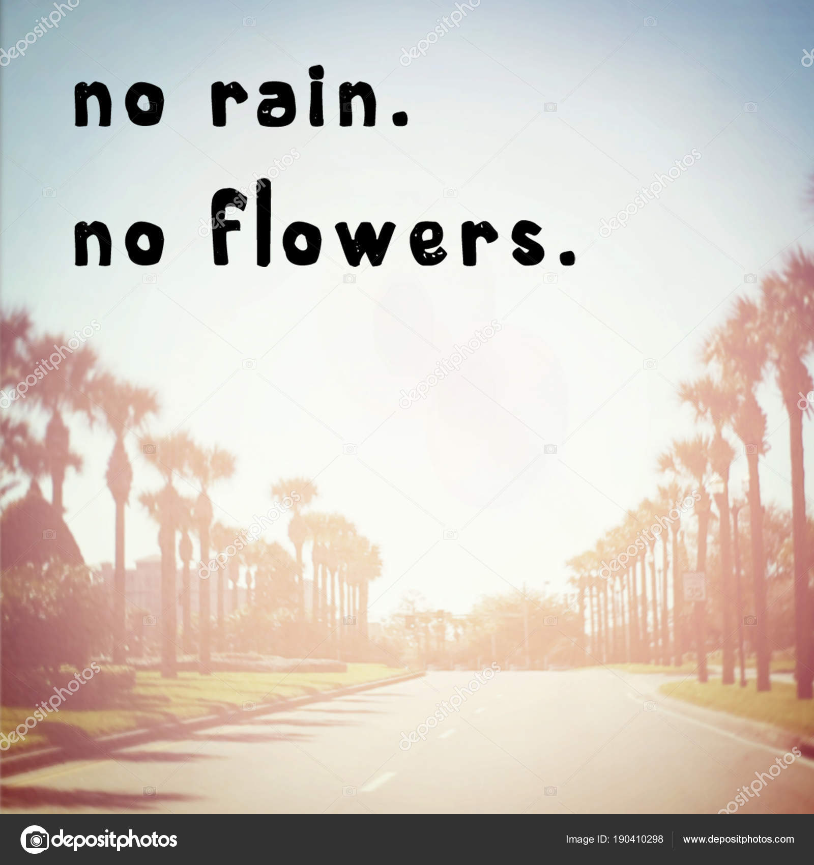 Rain Flowers Motivational Phrase Stock Photo Melking