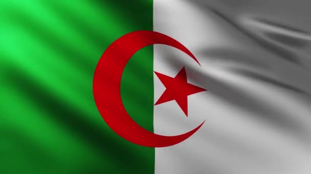 Large Algerian flag background fluttering in the wind with wave patterns