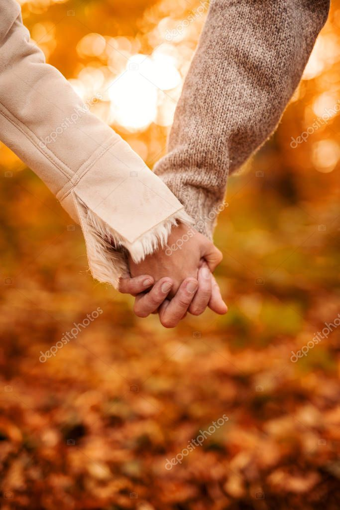 couple holding hands and walking in forest