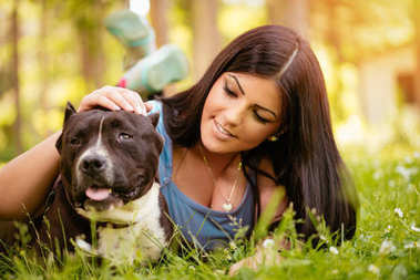 woman with her cute stafford terrier lying