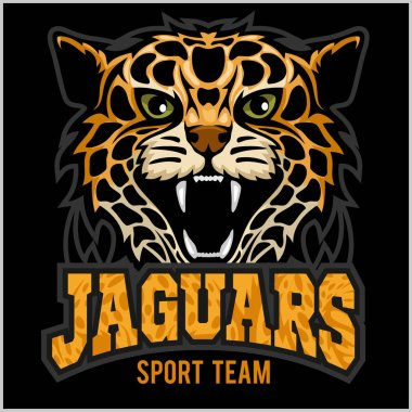 Sport team - Jaguar, wild cat Panther. Vector illustration, black background, shadow.