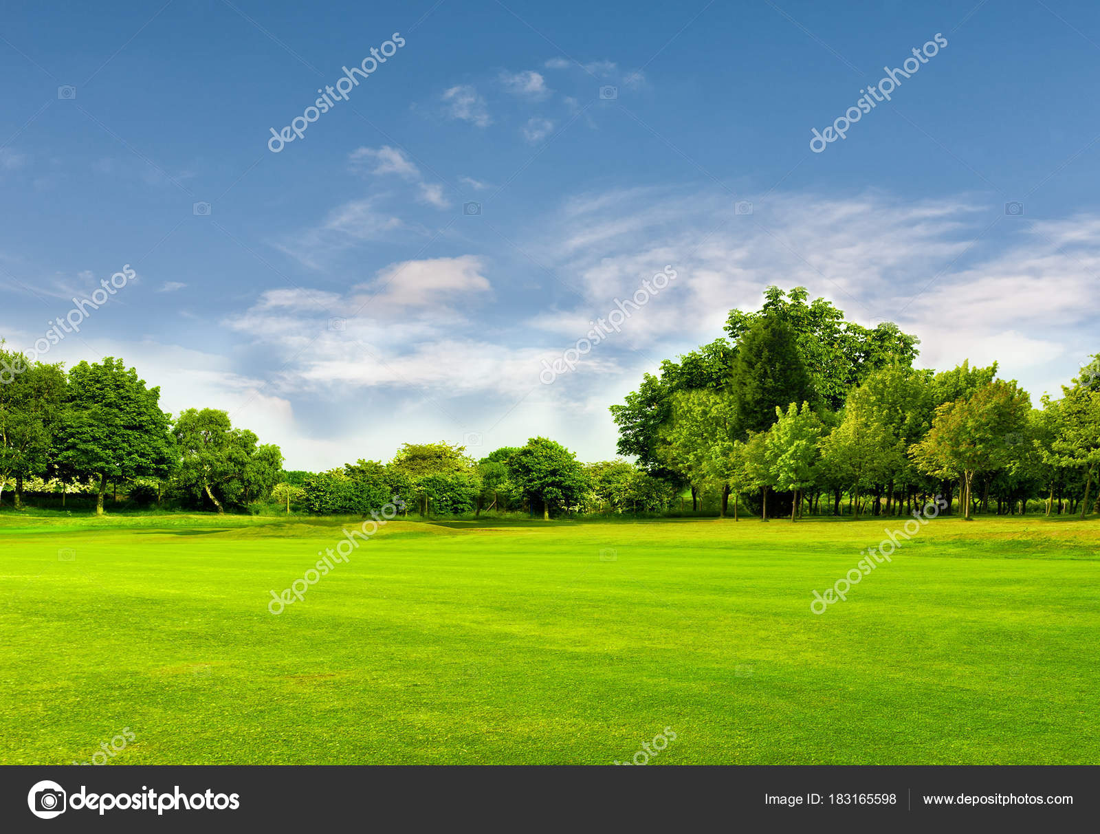 green field and blue sky in spring.great as a background — stock