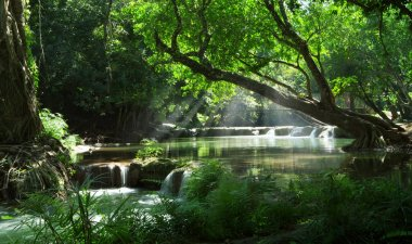 panorama view of nice waterfall and pond  in green tropic environment