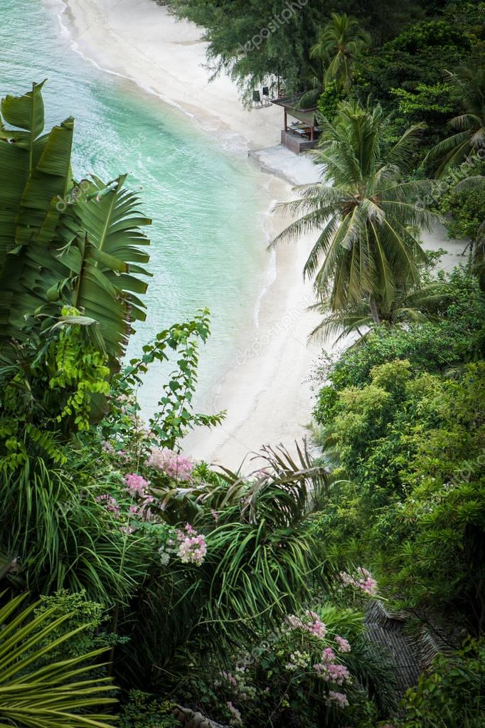 aerial view of nice tropical beach with some palms