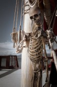 Photo close up view of  human skeleton hanging out in dark  sky environment