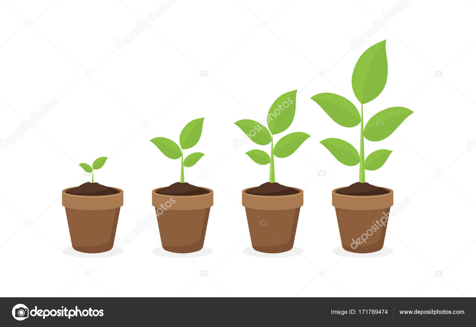 tie plant chat Join plant nite nationsubscribe to our emails and get a great discount on your first creative nite out, plus access to exclusive deals.