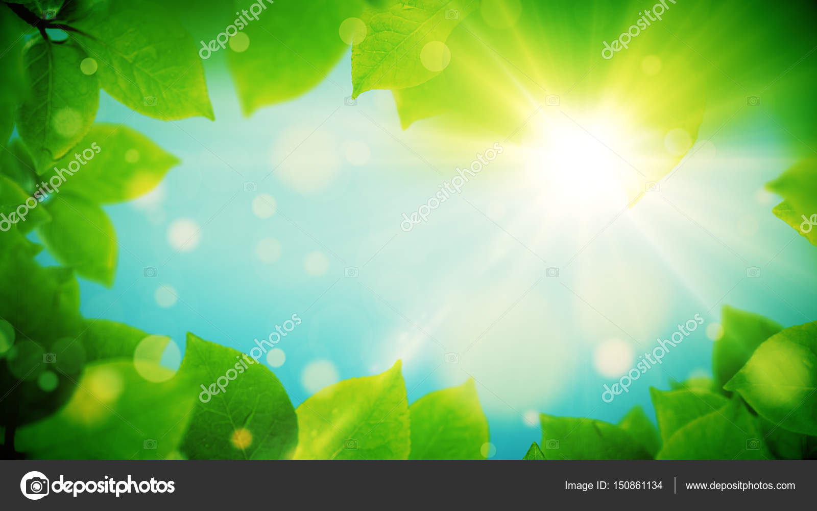 Summer background, natural frame of beautiful green leaves — Stock ...