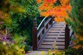 Fotografie dřevěný most v japonské zahradě
