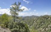 Montagne e foreste a Cipro