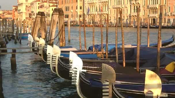 Gondole na Grand canal v slunečného rána. Benátky, Itálie