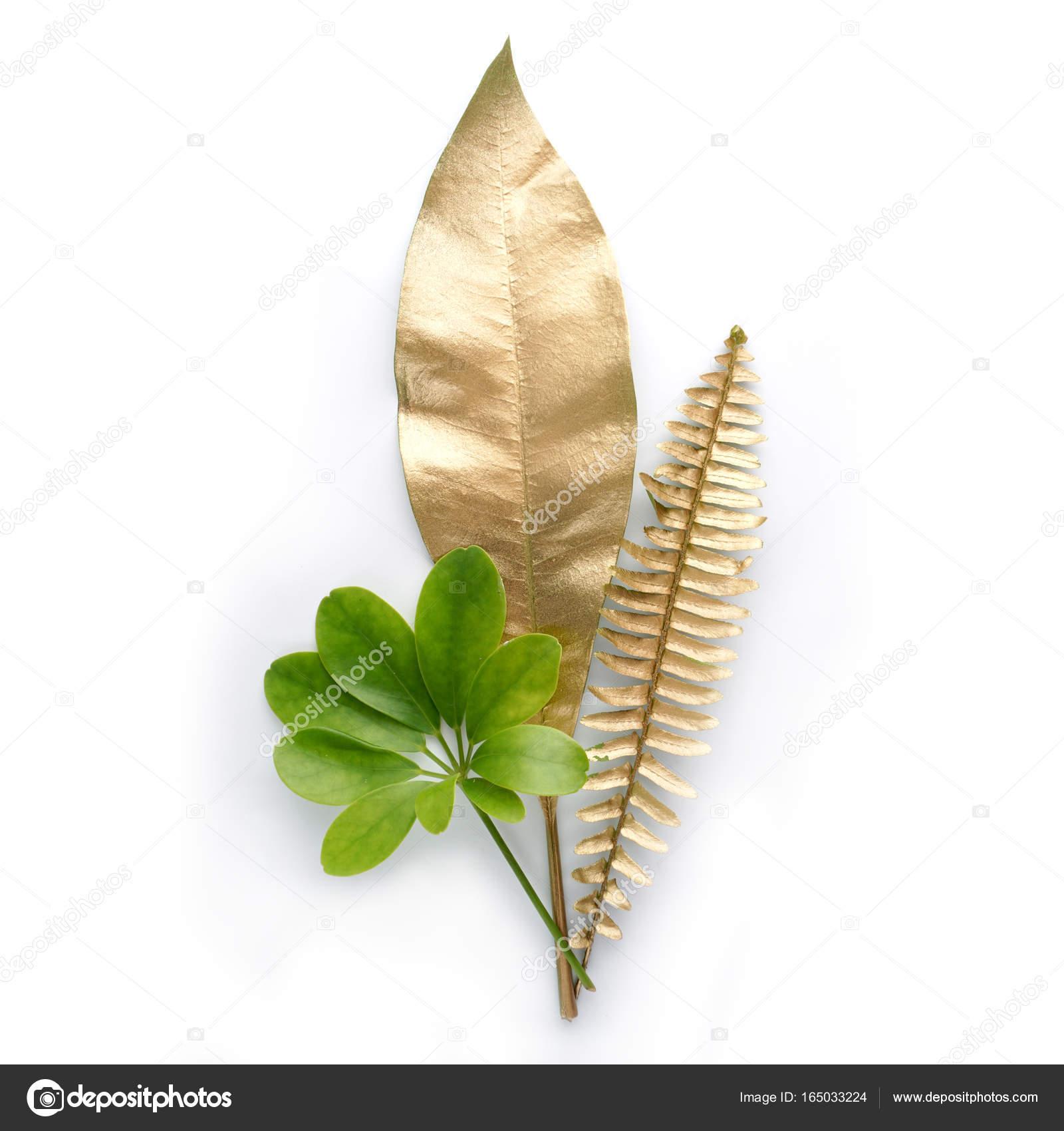 Goldene und grüne blatt design elemente deko elemente für die einladung hochzeit karten valentinstag grußkarten isoliert auf weißem hintergrund foto
