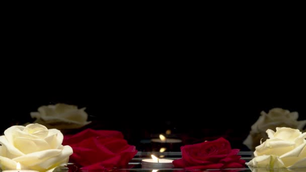 Zblízka záběr hořící svíčky a růže plovoucí na vodě na černém pozadí