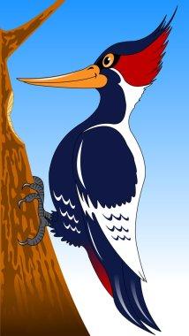 woodpecker cartoon style icon