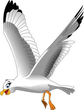 Seagull bird illustration