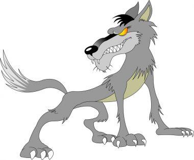 Wild danger grey wolf