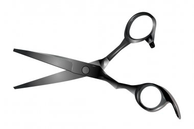 Professional hairdressing scissors isolated on white background. Vector