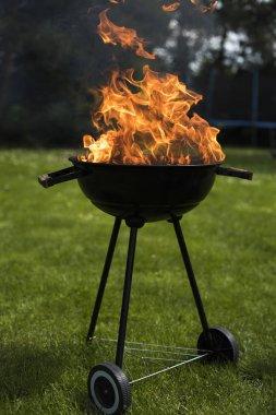 Doğa yangın Barbekü Izgara