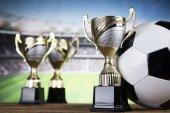Siegerpokale, Sportgeräte und Bälle