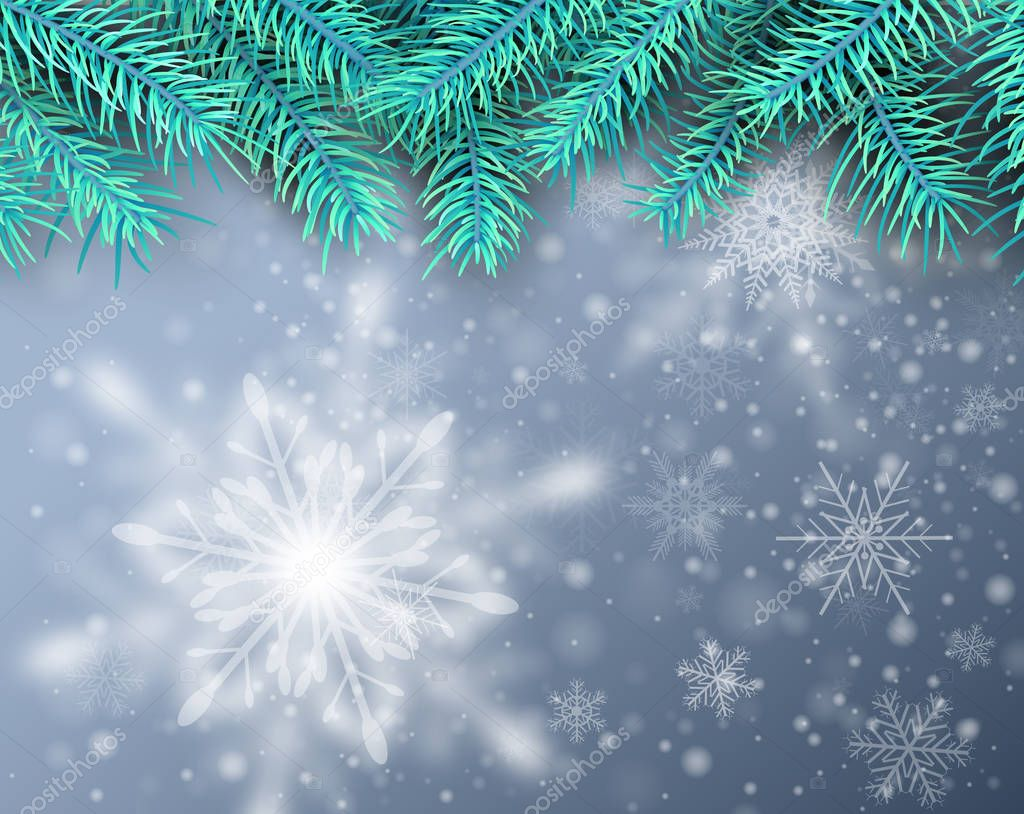 Christmas background, pine tree with snow