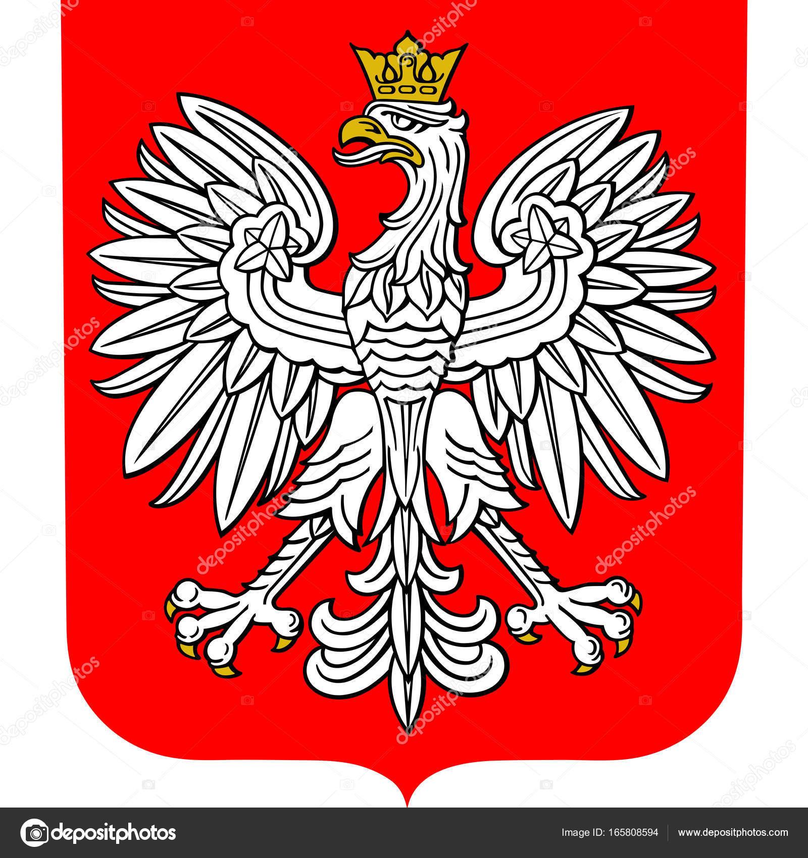 Escudo de Polonia — Vector de stock © cobalt88 #165808594