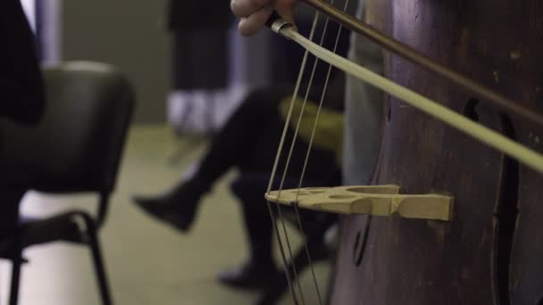 Musician playing contrabass, classic music