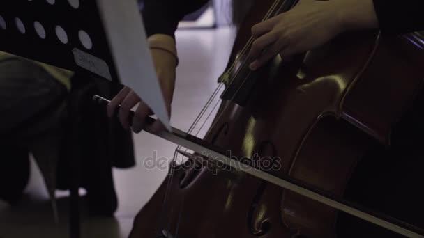 Musiker mit Violoncello, klassische Musik