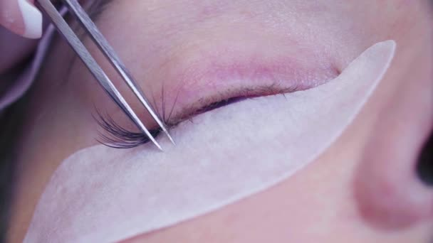 Woman eye. Eyelash extension procedure in salon