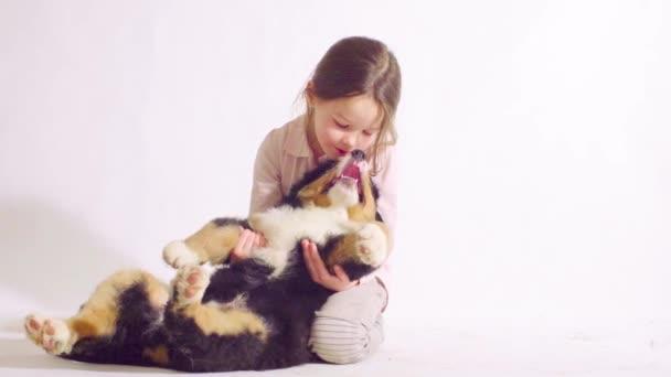 Mädchen und Welpe eines Berner Schäferhundes