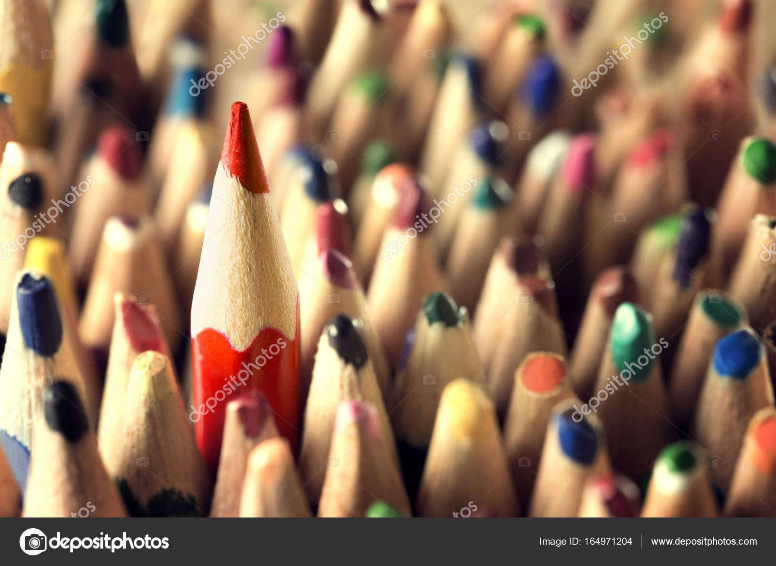 https depositphotos com 164971204 stock photo pencil leader concept sharp in html