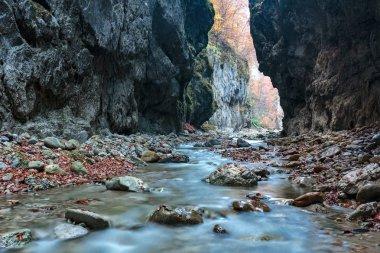 river flowing through  canyon