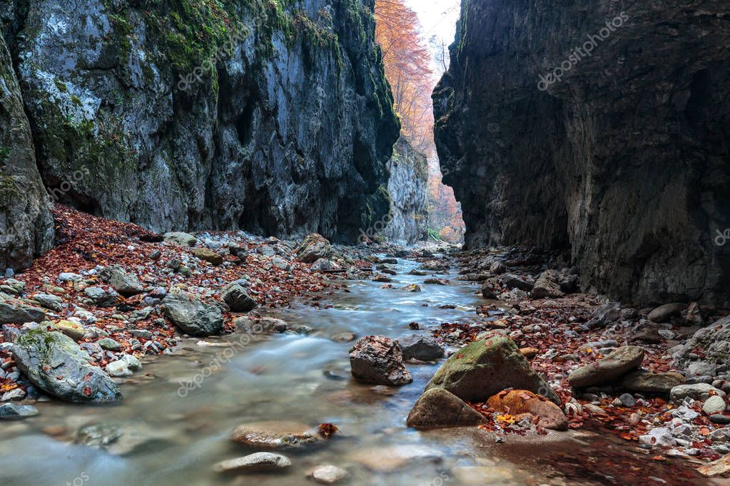 river flowing through  canyon