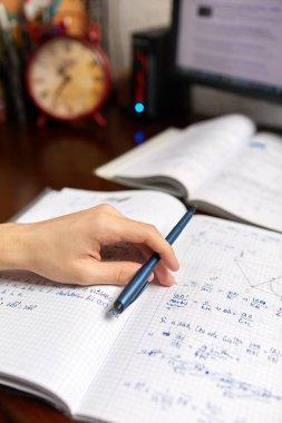 Teenager doing homework with computer